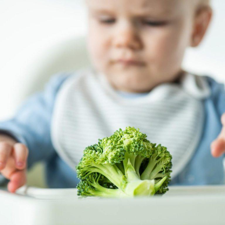 mi hijo rechaza los alimentos aprende a como solucionarlo El juego y el espectáculo nos ayudarán
